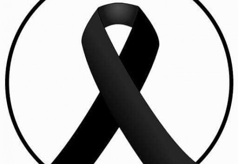 Τα Χελωνάκια συμμετέχουν στο Εθνικό Πενθος θρηνώντας για την μεγαλύτερη απώλεια σε ανθρώπινες ζωές που είχε η πατρίδα μας σε καιρό ειρήνης. Δεν θα ακούσετε μουσική στα κολυμβητήρια μας ούτε θα δείτε διαφημίσεις μας κατά τη διάρκεια του Εθνικού Πένθους. ▸Συμμετέχουμε στο βουβό κύμα αγανάκτησης και οργής που διακατέχει όλους μας για το φρικτό και άδικο θάνατο όλων αυτών των ψυχών και ελπίζουμε κάθε αγνοούμενος να επιστρέψει άμεσα στους δικούς του ανθρώπους. ▸Παρακαλούμε κάθε πολίτη να βοηθήσει, όσο μπορεί αυτούς που υποφέρουν, μέσα από τις δομές του Σώματος Ελλήνων Προσκόπων. www.sep.org.gr